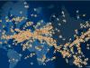 FlightAware — trouvez votre vol
